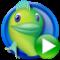 logo_bigfishgames